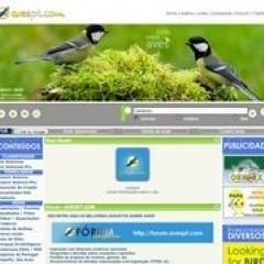 avespt.com