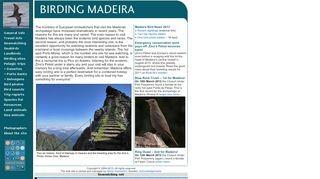 Birding Madeira