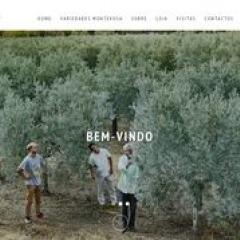 Azeite Monterosa - Feinstes Olivenöl aus Moncarapacho