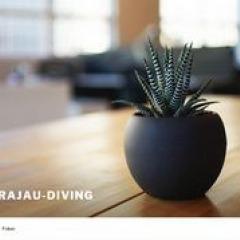 Garajau Diving Center