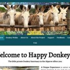 Project happy donkeys sanctuary