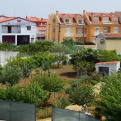 Beautiful Gardenhouse in Silveira, Santa Cruz - Houses zur Miete in Silveira, Lisboa, Portugal
