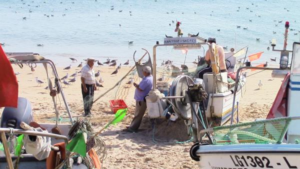 Strand in Salema