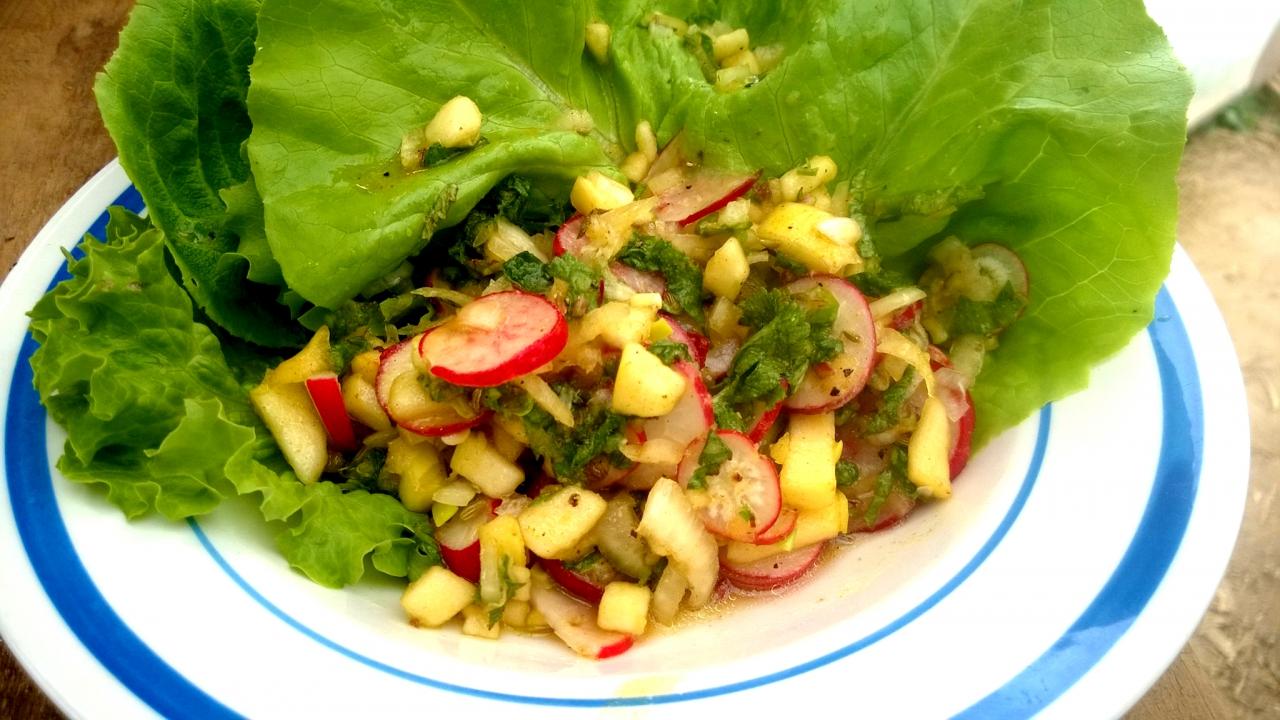 Radieschen, Rüben, Apfel, Zuccini Salat